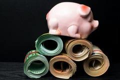 Eurobargeldbanknoten mit Einsparungsschwein-Geldkasten stockbilder