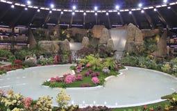 Euroflora 2011 - de Bloemen in tonen Stock Afbeelding