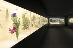 Euroflora 2011 - de Bloemen in tonen Royalty-vrije Stock Foto's