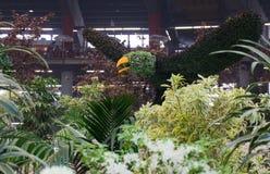 Euroflora 2011 - Großer Vogel der Blume Lizenzfreies Stockfoto