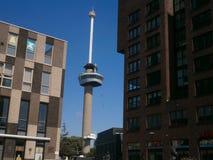 Euromast Στοκ εικόνα με δικαίωμα ελεύθερης χρήσης