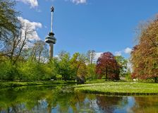 Euromast and Het Park - Rotterdam. View of Euromast from Het park in Rotterdam - Netherlands Stock Photos