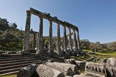 Euromos,爱琴海土耳其 库存图片