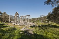 Euromos,爱琴海土耳其 免版税图库摄影