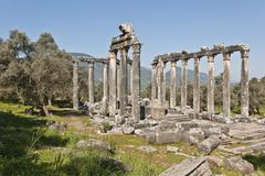 Euromos, Aegean Turkey. The Temple of Zeus at Euromos is to me the perfect ruined Greek temple.  Set in a forest of olive trees just east of the D525 highway Stock Photography