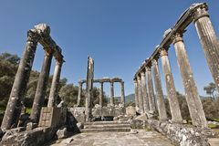 Euromos, Aegean Turkey. The Temple of Zeus at Euromos is to me the perfect ruined Greek temple.  Set in a forest of olive trees just east of the D525 highway Royalty Free Stock Images