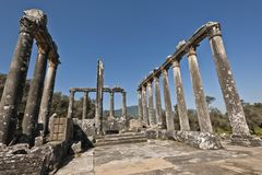 Euromos, Aegean Turkey. The Temple of Zeus at Euromos is to me the perfect ruined Greek temple.  Set in a forest of olive trees just east of the D525 highway Stock Photo