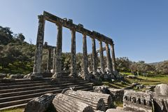 Euromos, Aegean Turkey. The Temple of Zeus at Euromos is to me the perfect ruined Greek temple.  Set in a forest of olive trees just east of the D525 highway Stock Images