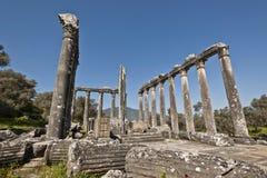 Euromos Aegean Turkiet Royaltyfria Bilder