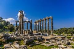Euromos Oude Stad De tempel van Zeus Lepsinos Lepsynos werd gebouwd in de 2de eeuw Milas, Mugla, Turkije stock foto