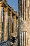 Euromus of de Oude Stad van Euromos Tempel van Zeus Lepsinos Milas, Mugla, Turkije Kyromos, Hyromos Vertaling van: specifiek stock afbeeldingen
