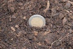 Euromynt Royaltyfri Bild