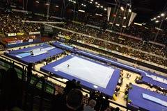 Europäische künstlerische gymnastische Meisterschaften 2009 Lizenzfreie Stockfotografie