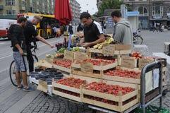 EUROPÄISCHE MIGRANS-ARBEIT ALS VANDORS Lizenzfreie Stockfotografie