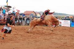 Europäische Rodeo-Meisterschaft Lizenzfreies Stockbild