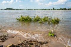 Europäischer Fluss an der Flut Lizenzfreie Stockbilder