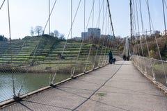 Europäischer Fluss Max Eyth See Stuttgart Vineyards Sunny Landscape stockfotos