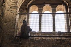 Europäisches touristisches Schauen während des Fensters Lizenzfreie Stockfotos
