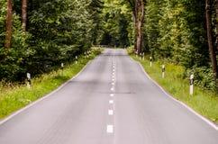 Europé Asphalt Forest Road Fotografering för Bildbyråer