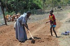 Europén ställa upp som frivillig för själv-tåla mat i byn av P Arkivfoton