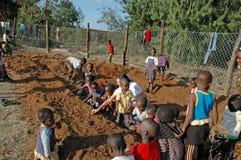 Europén ställa upp som frivillig för själv-tåla mat i byn av P Royaltyfri Foto