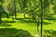 Europ?ischer Stadtgarten an einem Sommertag stockfotos