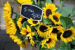 Europa lopp: Holland Amsterdam, blommamarknad arkivfoton