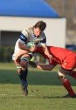 Europa-Rugby-Cup - Benetton gegen Munster Lizenzfreies Stockfoto