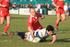 Europa Rugby Cup - Benetton vs Munster royalty free stock photography