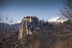 Europa, Slowenien, ausgebluteter See Stockfotos