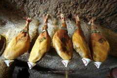 EUROPA SPIAN GRAN kanarek Zdjęcie Stock