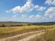 Europa Västra ukrainskt landskap jordbruk fields tidigt den norr vintern för den galilee israel ligganden arkivbild