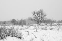Europa vinter Arkivfoton