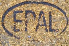 Europallet emblem som göras, genom att bränna på trä arkivfoto