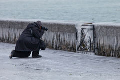 Europe 2012 Cold Snap. Geneva, Switzerland. A local Swiss photographer taking the opportunity to take picture of icicles formed on the wall along Lake Geneva Royalty Free Stock Image