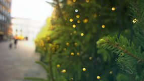 Europe decoration downtown New Year and Christmas. Christmas tree with garlands. Selective focus, toning, sunset. Solar light eff royalty free stock image