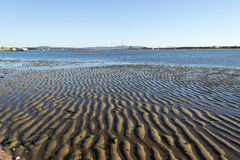 Europe estuary landscape. Low tide marks at tagus river estuary Stock Photo