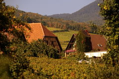 EUROPE FRANCE ALSACE Royalty Free Stock Image
