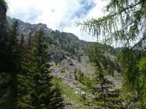 Summit rock panorama landscap of the mountains in italy south tyrol europe. Europe italy south tyrol mountains summit rock trees forest nature forest trees royalty free stock images
