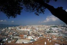 EUROPE PORTUGAL LISBON BAIXA CASTELO. The castelo sao Gorge in the city centre of Baixa in the city centre of Lisbon in Portugal in Europe Stock Images