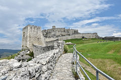 Europe, Slovakia, castle Spissky hrad. Ruin of castle Spissky hrad stock image