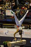 European Artistic Gymnastic Championships 2009 Royalty Free Stock Image