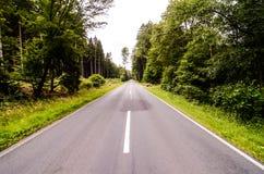 European Asphalt Forest Road Royalty Free Stock Photography