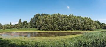 The European bird sanctuary and nature reserve Kuehkopf Knoblochsaue, germany.  Royalty Free Stock Image
