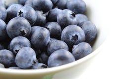 European blueberry fruits Stock Photos