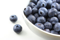 European blueberry fruits Royalty Free Stock Image