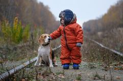 European boy and the Beagle in autumn forest Royalty Free Stock Image