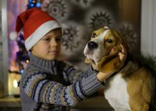 European boy in a red cap with her Beagle dog Stock Photos