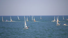 European Championship sailboats competition  Royalty Free Stock Image