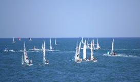 European Championship Sailing regatta Royalty Free Stock Photography